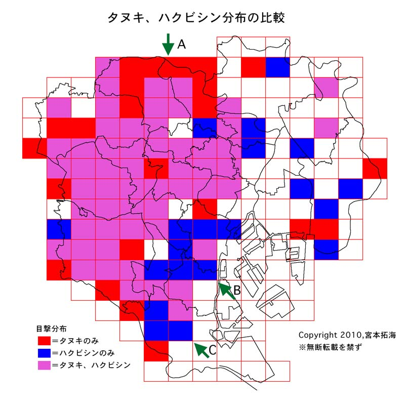 図「タヌキ、ハクビシン分布の比較」について この図はタヌキ、ハクビシンの目撃分布のメッシュ地図を統合したものである。目撃数にかかわらず、「タヌキのみの